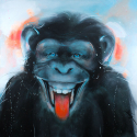 The smiling monkey