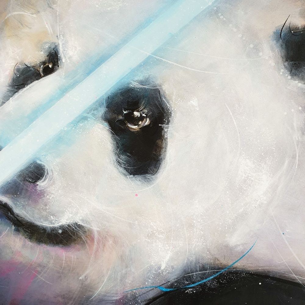 detail pandawan : peinture POPART - inspiration starwars par Lucie LLONG